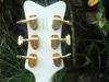 Gretsch-White-Falcon