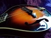 Collings Mandolin