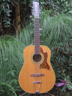 Neil Finn and the Tempo 12 string